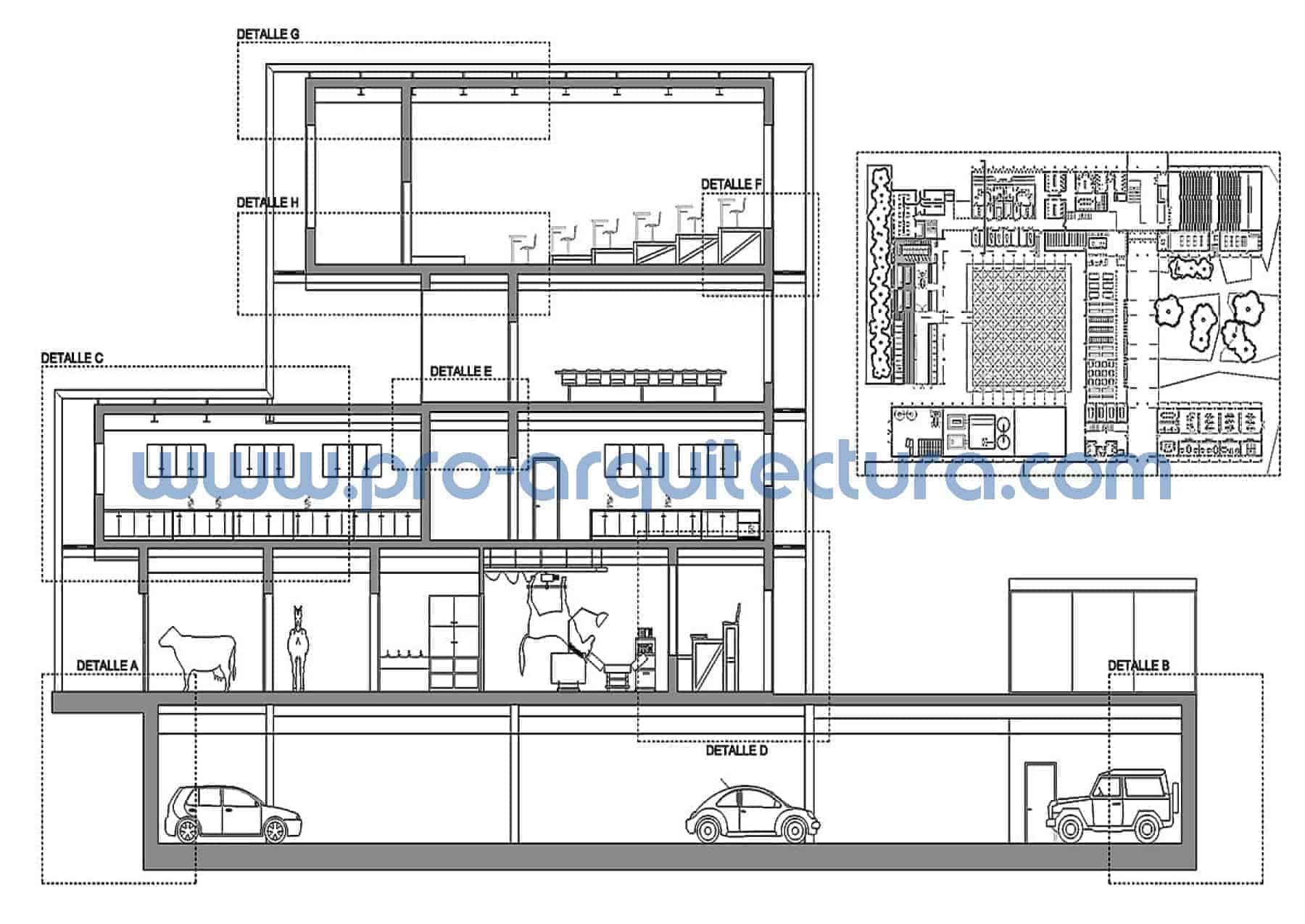 0048-01 FFacultad de veterinaria - Sección y detalles constructivos - Ayuda con la entrega del pfc pfg tfg tfm de arquitectura.