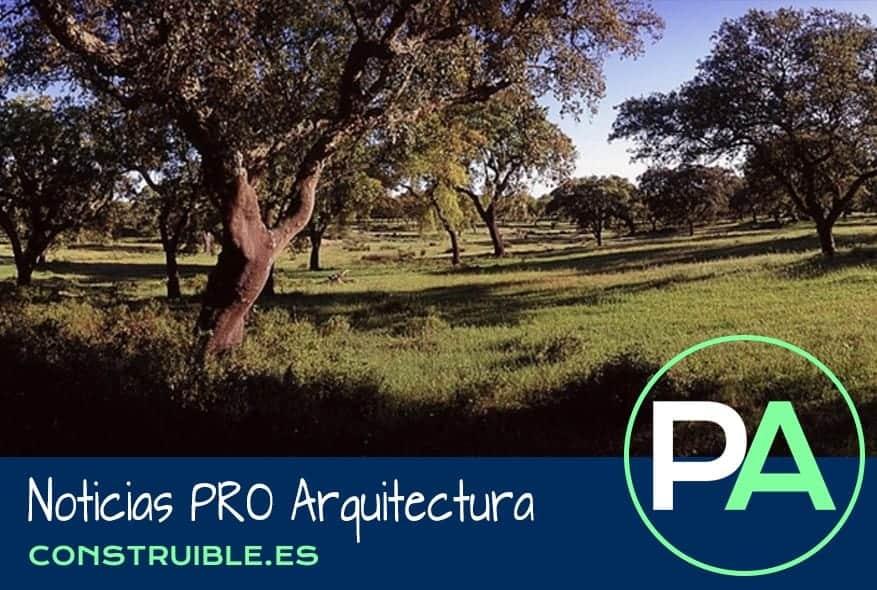 Noticias PRO Arquitectura. Nuevos pavimentos de corcho sostenible.